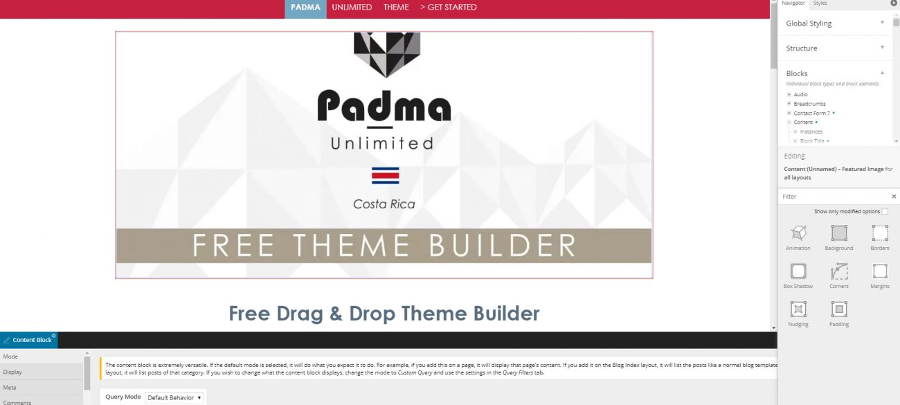 Forever-Free WordPress Theme Builder